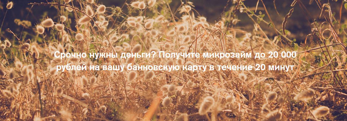 Микрозаймы до 20 000 рублей в МФО «Слон Финанс»: 6 доводов в пользу компании